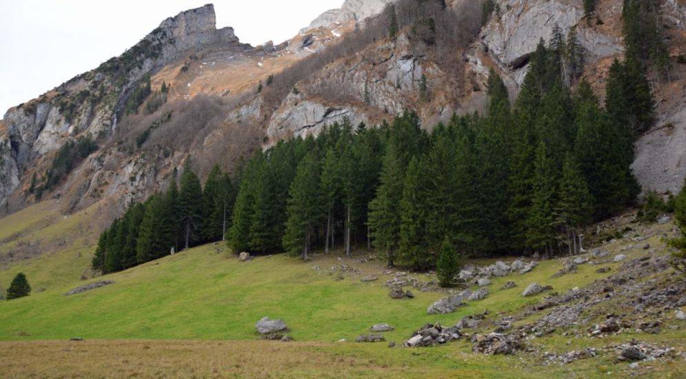 Wasserauen AI: Berggänger stürzt steil abfallende Gelände hinunter