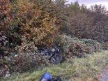 Baar, Cham ZG: Lernfahrer landet im Gebüsch - Unfall auf der A4